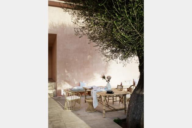 Déjeuner à l'ombre de l'olivier