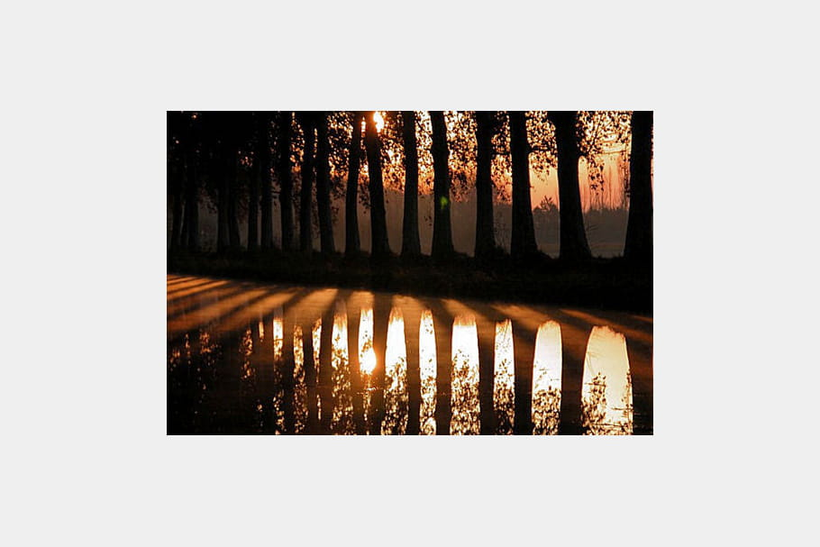 Le Canal du Midi en novembre