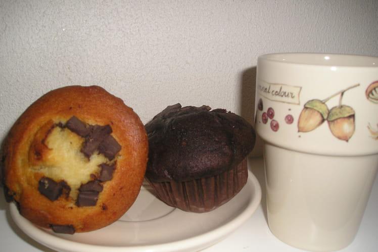 Muffins vanille et chocolat