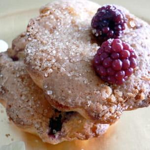 muffins aux mûres et à la rhubarbe