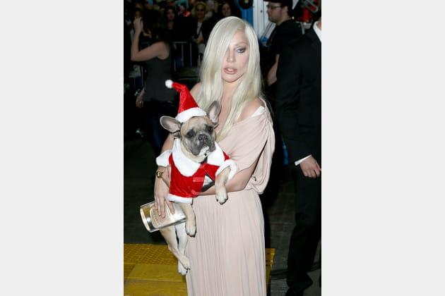 Lady Gaga déguise son chien