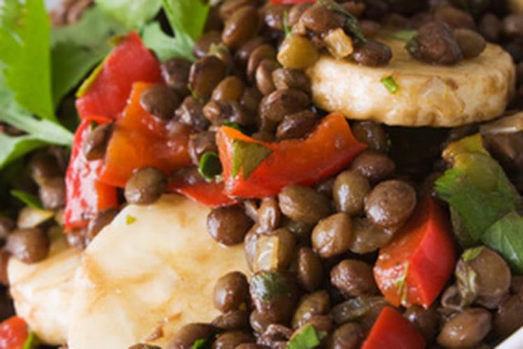 Salade de lentilles, tomates, fenouil, oignon
