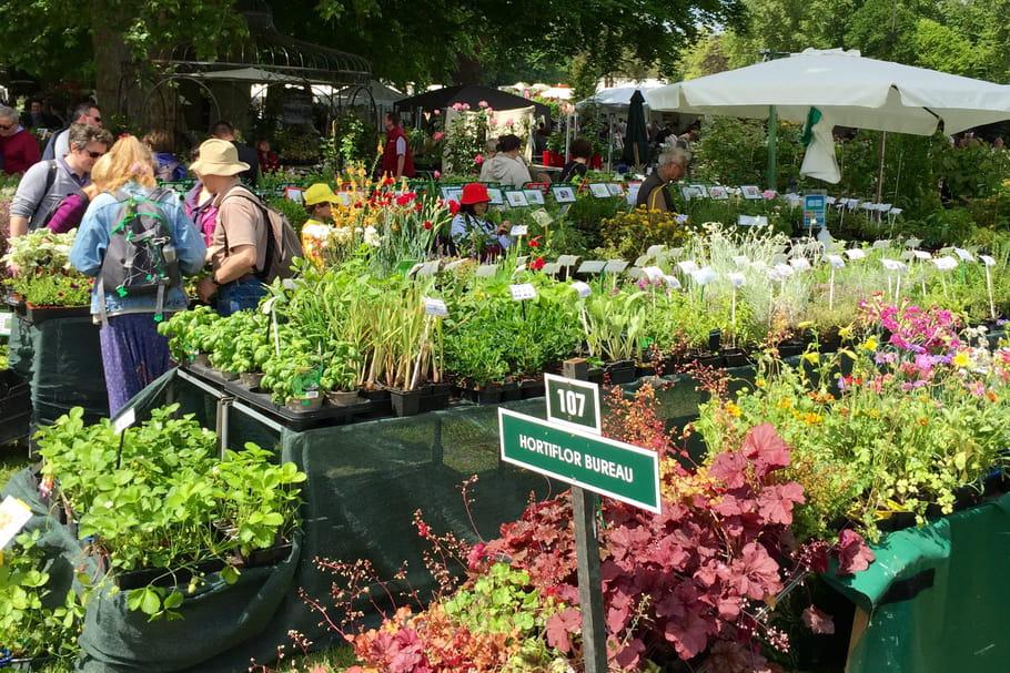Les Journées des Plantes de Courson reviennent à Chantilly