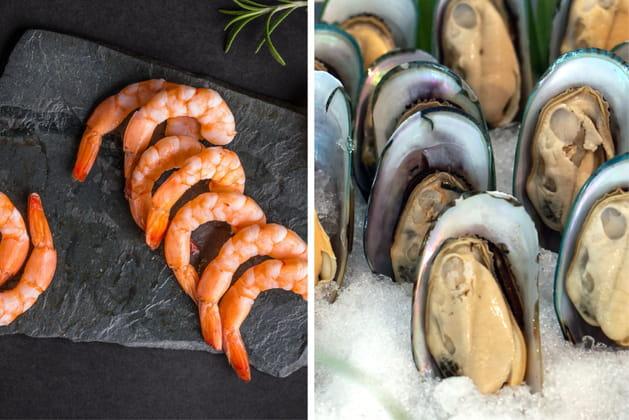 Moules ou crevettes?