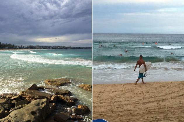 Manly : spot de surf pas foufood