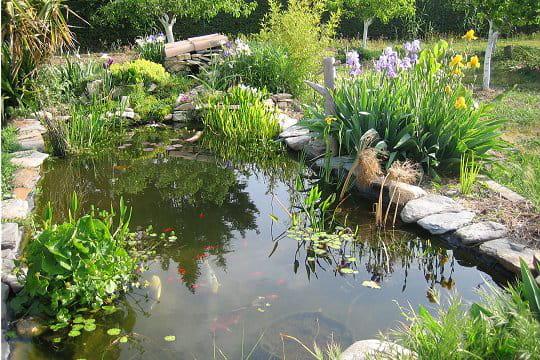 Les étangs de l'olivade