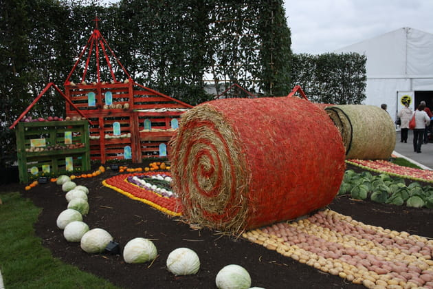 Jardin fruits et légumes