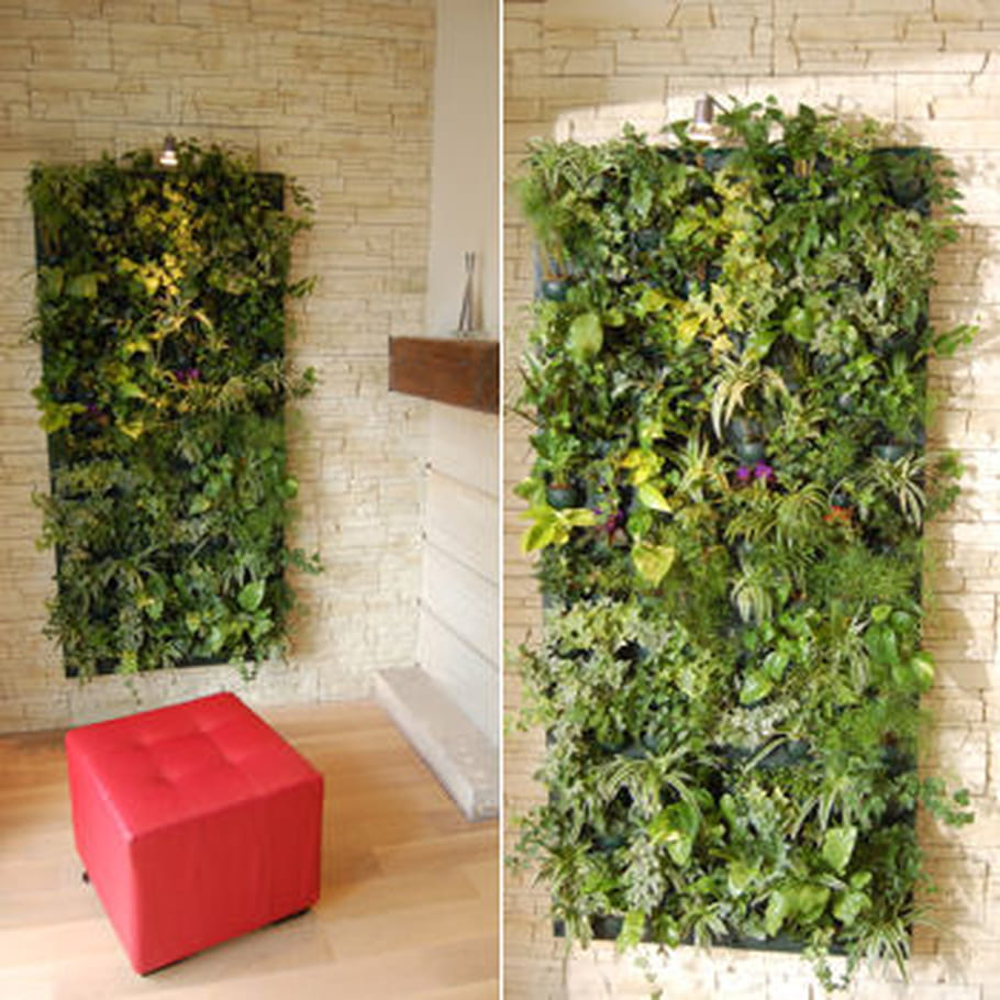 Mur v g tal d 39 int rieur le pas pas pratique for Mur vegetal exterieur synthetique