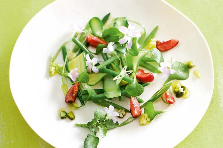 Salade de courgette, haricot et cerise, sauce pistache