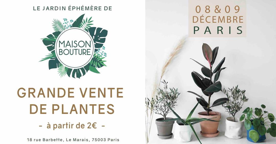 vente-de-plantes-maison-bouture-paris