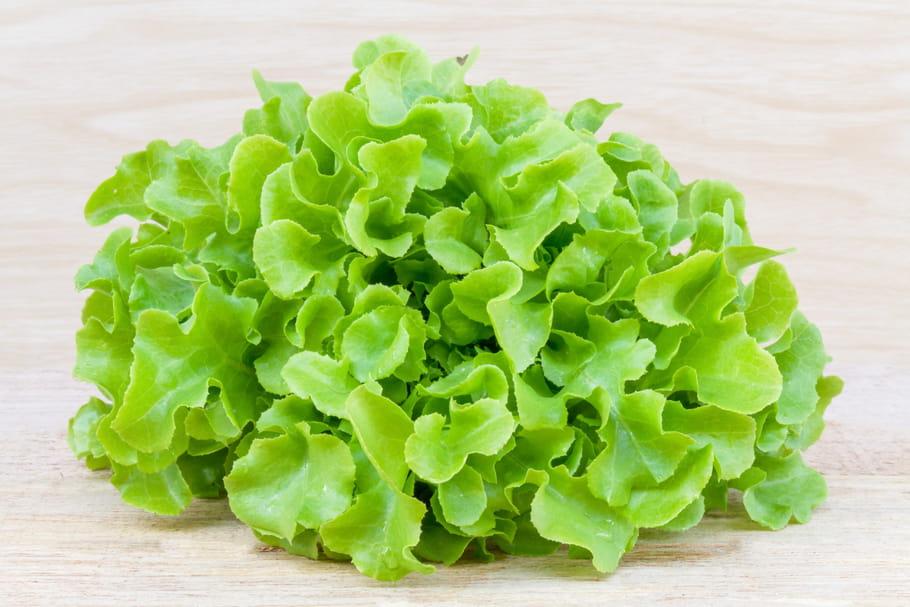 Comment garder belle salade plusieurs jours