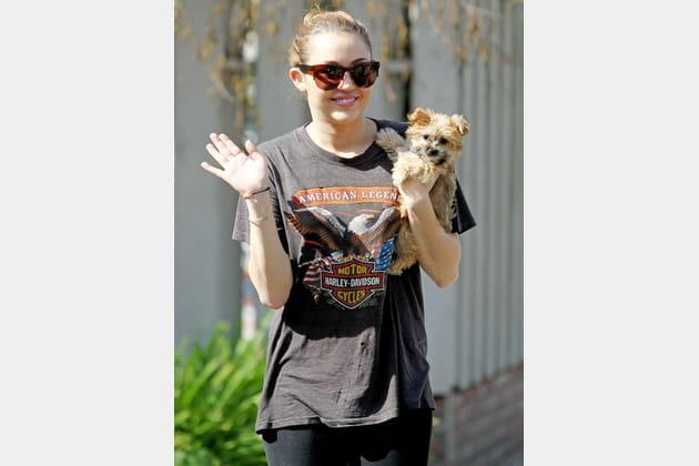 Miley Cyrus et son yorkshire