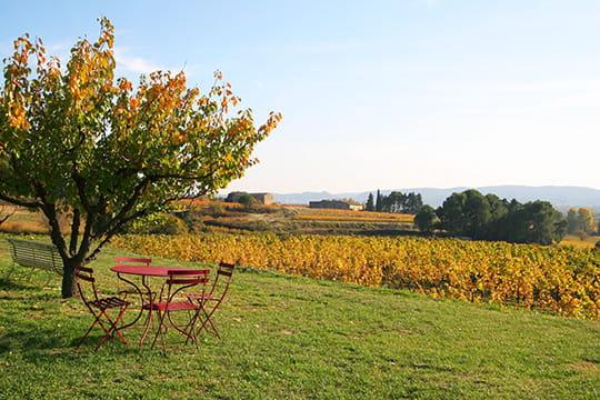 Un jardin sur les vignes