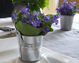 Fleurs du jardin for Jardin issler