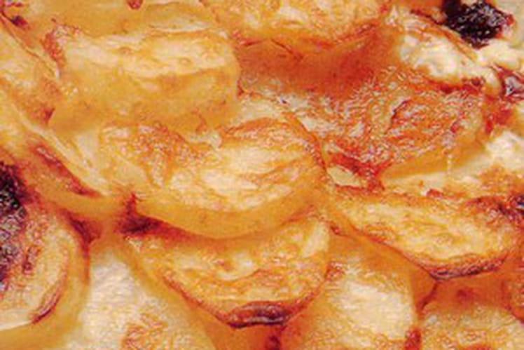 Gratin gourmand endives-pommes de terre
