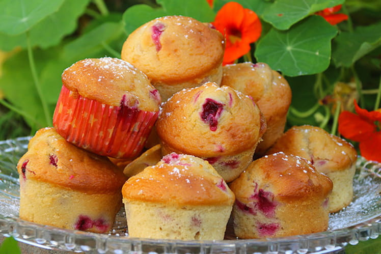 Muffins aux canneberges et sirop d'érable et orange