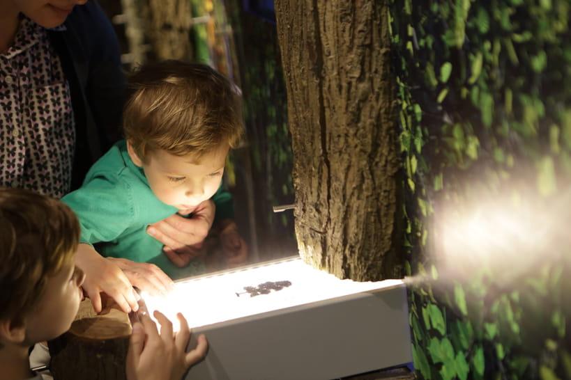 Top 10des musées pour enfants à Paris