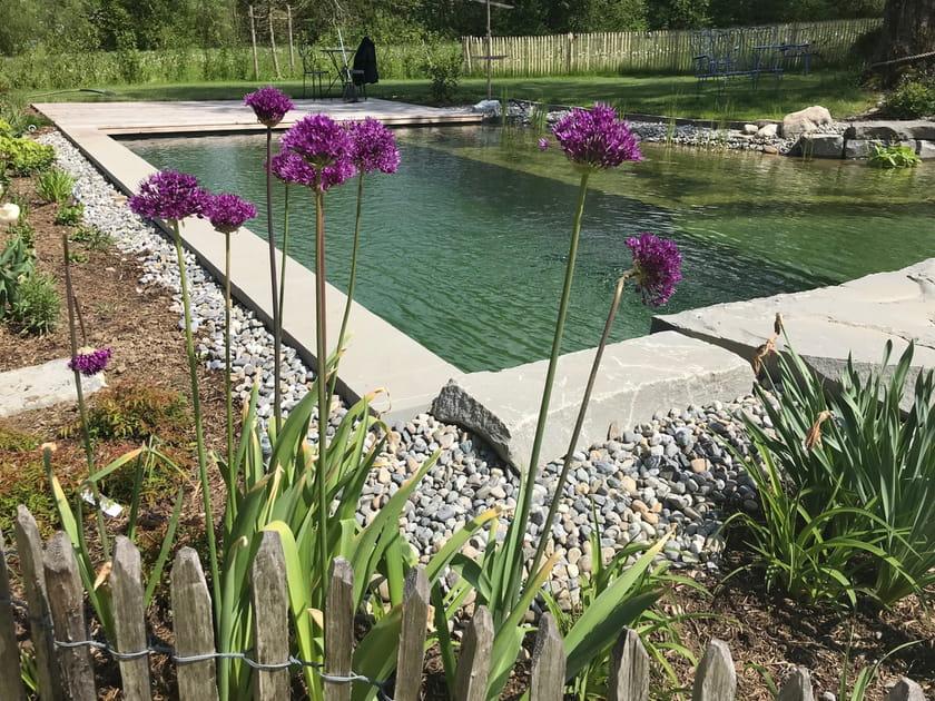 Un étang transformé