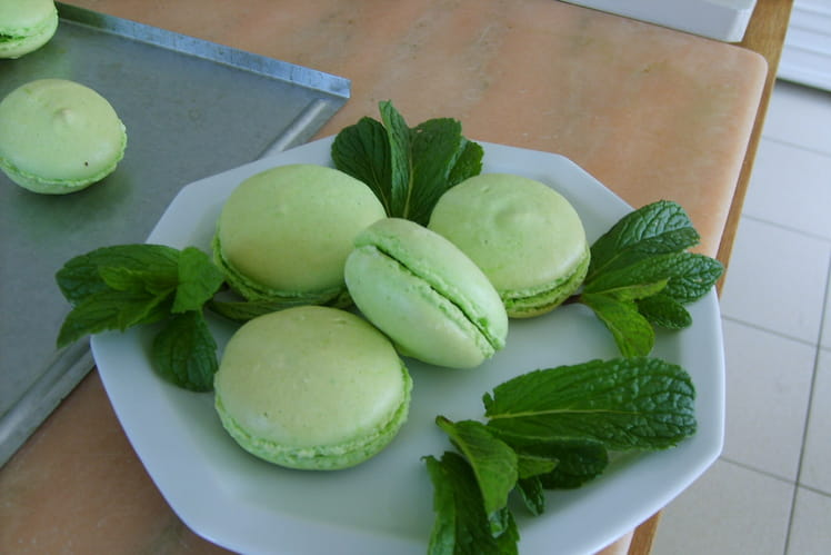 Macarons choco menthe
