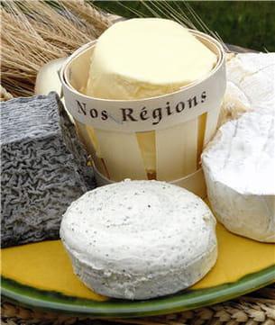 les yaourts et fromages contiennent des bactéries sans risques.