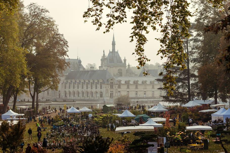 Journées des Plantes de Chantilly 2020: demandez le programme!