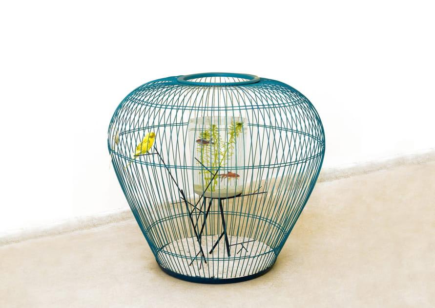 Cage-aquarium Mezzanine de Constance Guisset