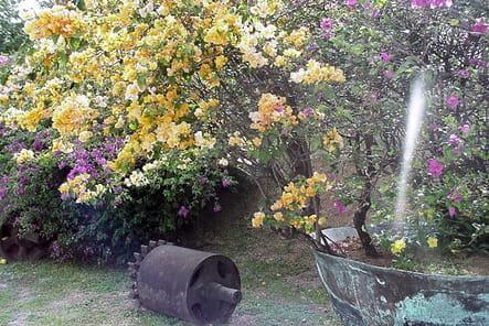 Esprit romantique les plus belles mises en sc ne au jardin journal des femmes - Table jardin romantique fort de france ...