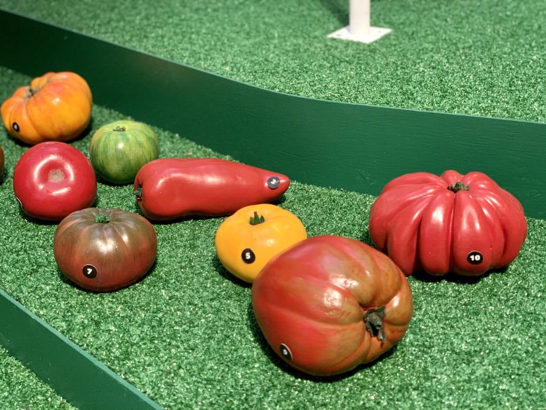 tomates-exposition-je-mange-donc-je-suis