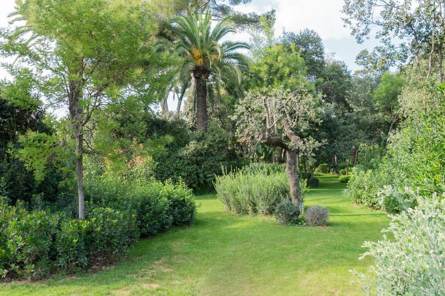 un jardin en bel appartement en ppe avec un jardin immoscout24 un jardin en ville ajaccio. Black Bedroom Furniture Sets. Home Design Ideas