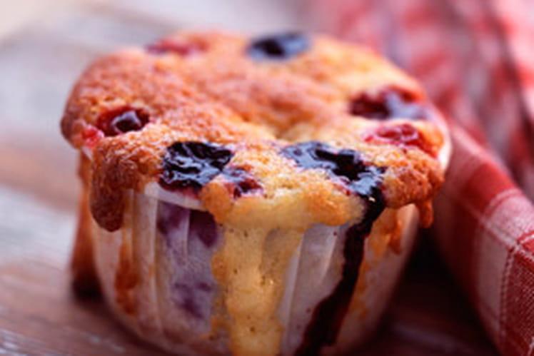 Gâteau à la brousse de brebis et fruits rouges