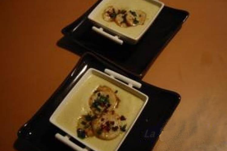 Crème d'endives et noix de Saint-Jacques