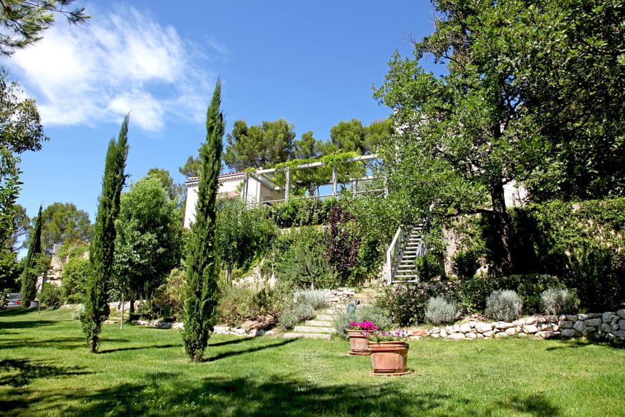 Les plantes adapt es au climat de chaque r gion - Haie de jardin qui pousse vite ...