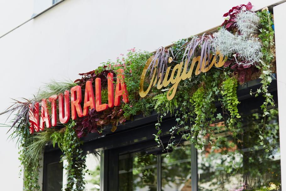 Naturalia ouvre Origines, un temple du bien-être 100% bio