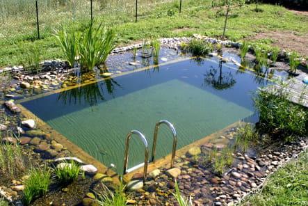 Une piscine bio en Auvergne