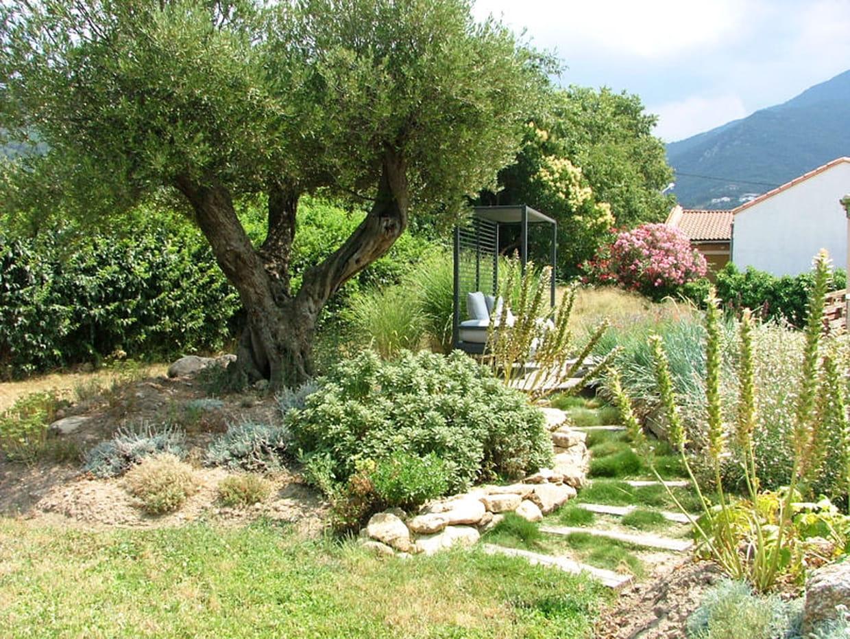 Apr s l 39 escalier bien entour - Deco jardin olivier nanterre ...
