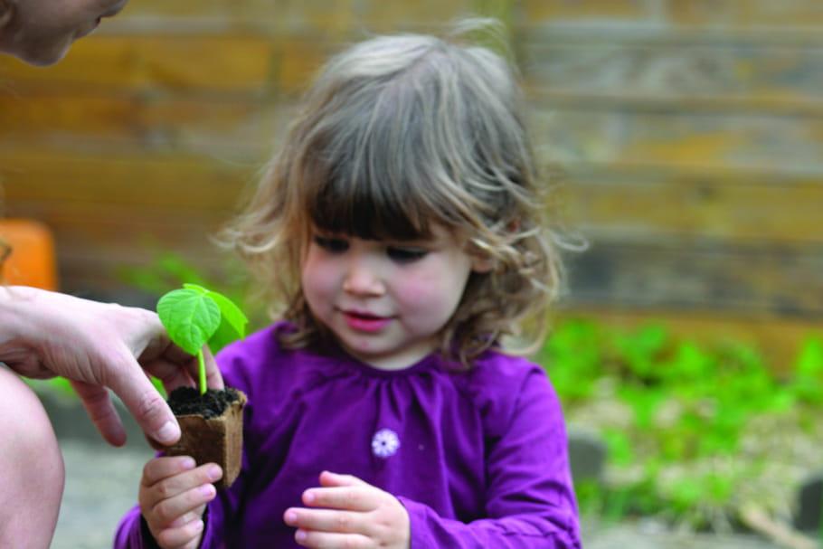 Potager d'Aucy : aiguisez vos talents de jardinier et de cuisinier