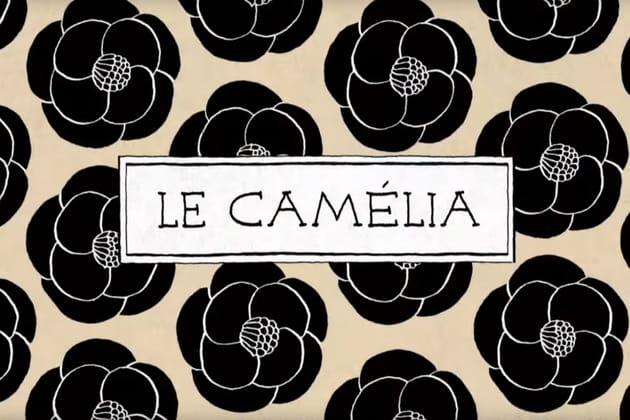 Le camélia