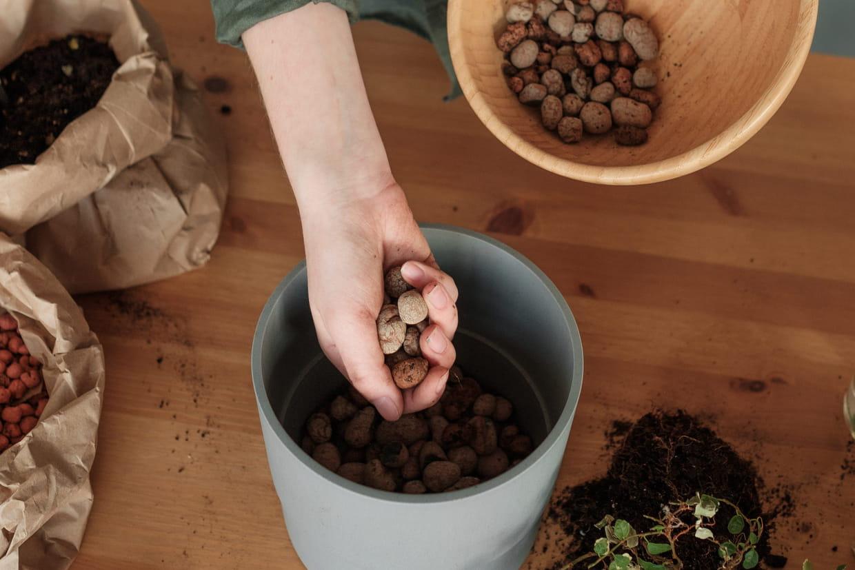 Quoi Planter Dans Une Terre Argileuse billes d'argile : pourquoi et comment les utiliser avec vos