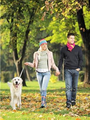 a la ville ou à la campagne, promener votre animal de compagnie est une vraie