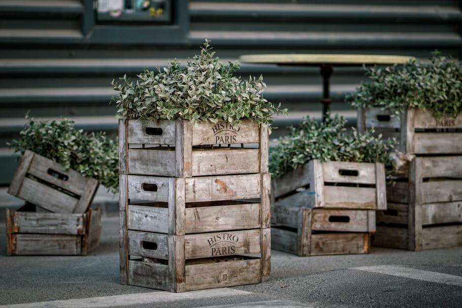 Caisse en bois: gratuite, d'occasion, où en trouver et comment les recycler?