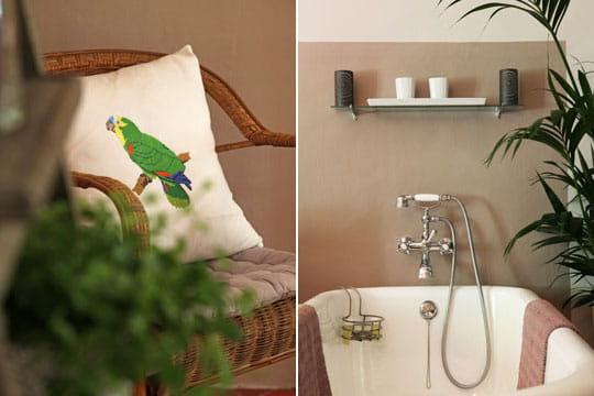 Perroquet au bain