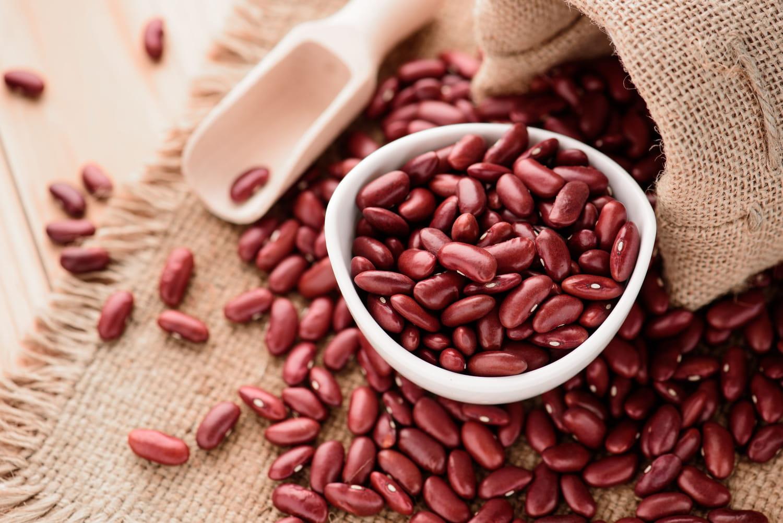 Haricot rouge: bienfaits santé, teneur en protéines