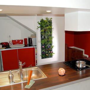 le mur végétal d'intérieur peut s'installer dans différentes pièces de la