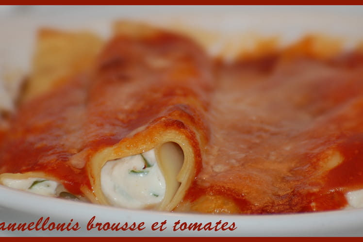 Cannellonis brousse et tomates