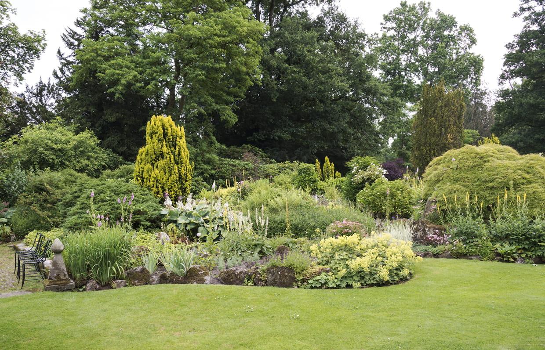 Plantes Pour Jardin Contemporain comment aménager un jardin à l'anglaise ?