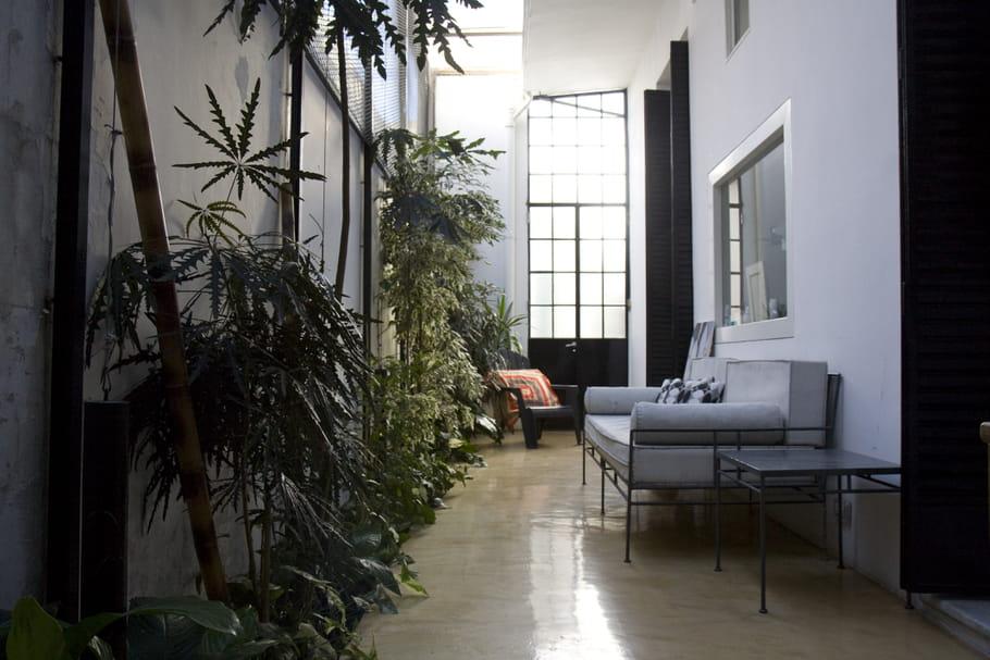 cr er une ambiance tropicale couloir les bonnes id es pour le d corer journal des femmes. Black Bedroom Furniture Sets. Home Design Ideas