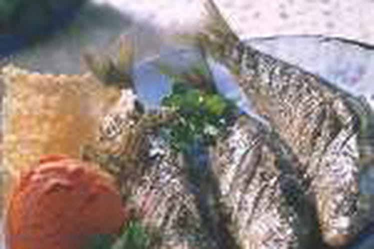 Sardines grillées au thym