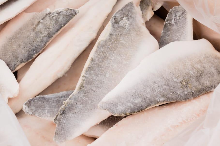 Comment d congeler le poisson rapidement for Degivrer rapidement un congelateur