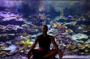 yogaquarium-yoga-aquarium-de-paris