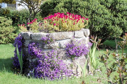 Le puits fleuri